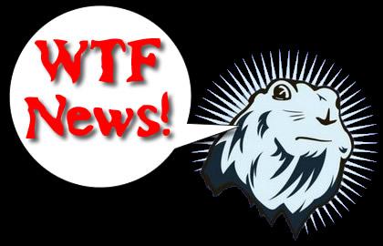 wtf_news